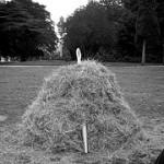 Candidate attraction: finding the needle in a haystack