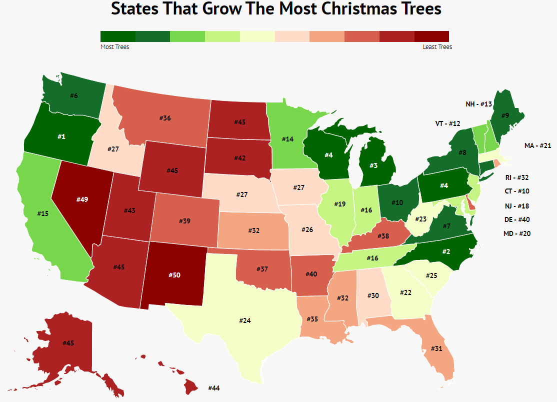 Let's Talk Christmas Trees: States That Grow The Most Trees And Employ The Most Workers