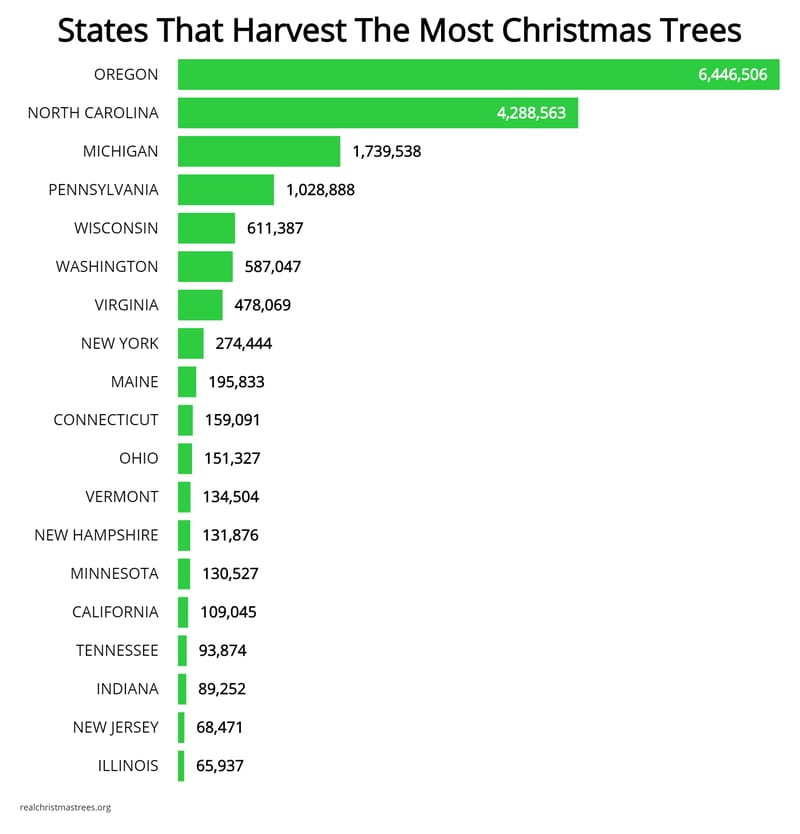 Most Popular Christmas Tree: Let's Talk Christmas Trees: States That Grow The Most